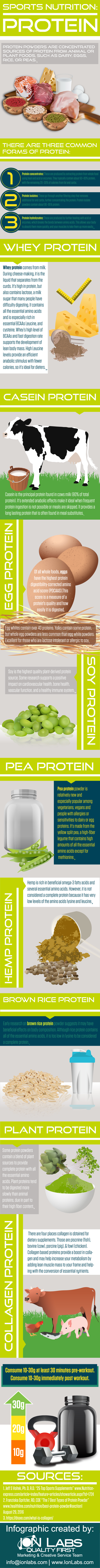 Most Popular Protein Supplements in Sports Nutrition